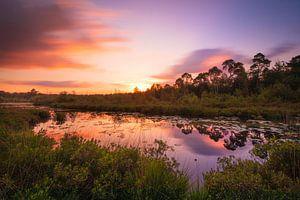 Zomerse zonsondergang van Stephan Krabbendam