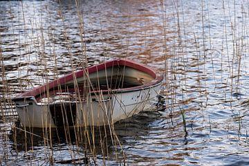 verloren bootje van Nienke Stegeman