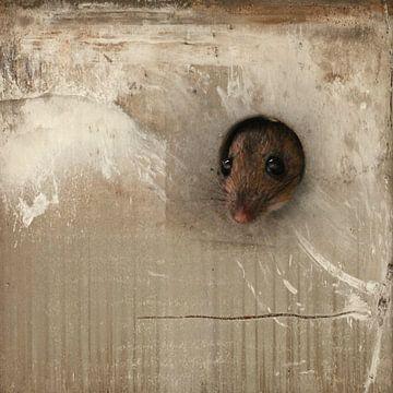 Maus sur Heike Hultsch