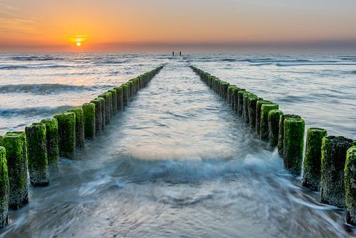 Paalhoofden bij zonsondergang strand Domburg