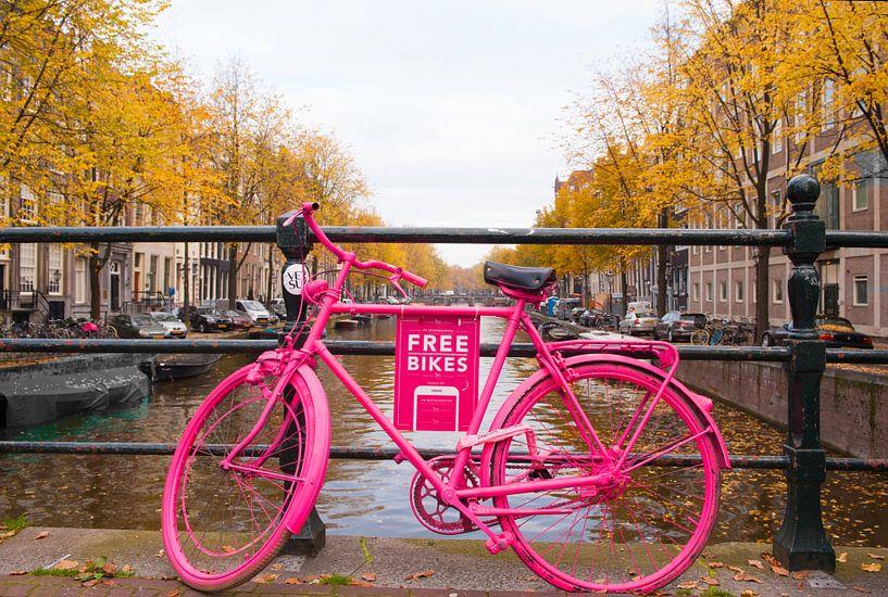 Amsterdam Free Bikes van Brian Morgan