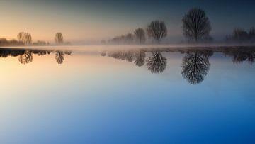 Reflections von Lex Schulte