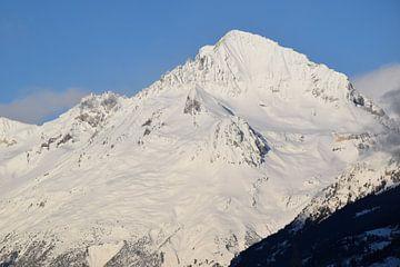 berg met sneeuw van morena de vlieger
