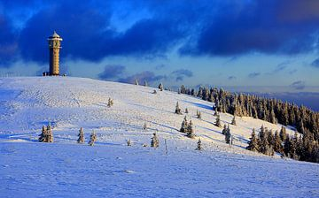 Zwarte Woud in de winter van Patrick Lohmüller