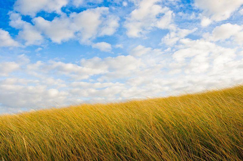 Dunes and Blue Sky sur Erwin Plug