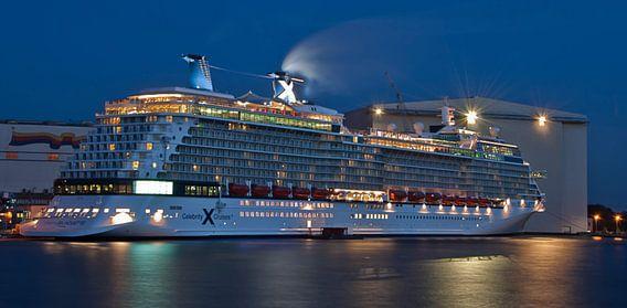 Cruiseschip in de haven