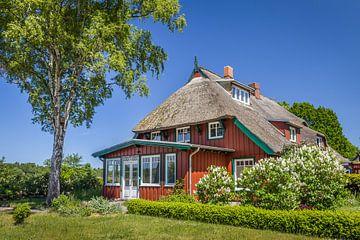 Historisches Reetdachhaus in Prerow von Christian Müringer