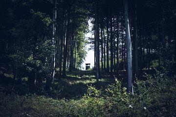 Jagershut in het bos van Suzanne Schoepe