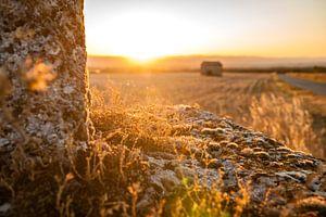 Intenses warme zonsondergang auf dem plattenland