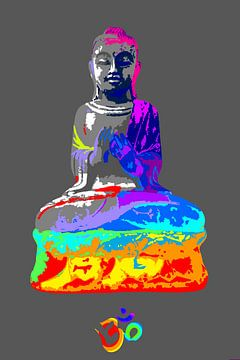 Budha van Damien Vincent