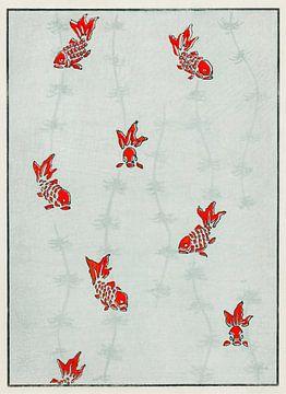 Naadloze gouden vis illustratie, Watanabe Seitei