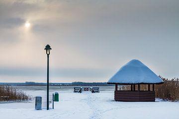 Winter on a lake with snow van Rico Ködder