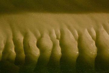 Mysterieus Wad (1) van Meindert van Dijk