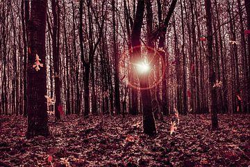 Herbst in Bewegung von Elianne van Turennout