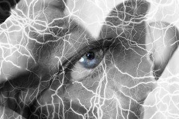Thunder Eye von David Pichler