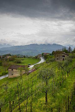 Toscaans landschap met donkere wolken en heuvel met olijfbomen van Joost Adriaanse