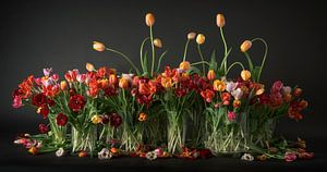 Tulpen stilleven