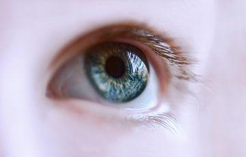 Mooi oog van