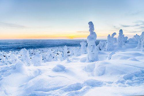 Blauw winterlandschap in Finland van