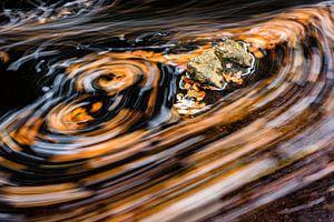 Herfstblad in een stromende rivier