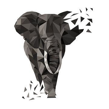 Elefant van Felix Brönnimann