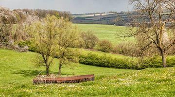Lente in het Gulpdal in Zuid-Limburg