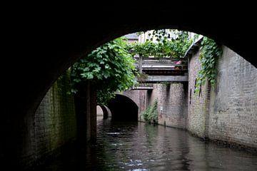 Binnendieze, 's-Hertogenbosch van Kees van Dun