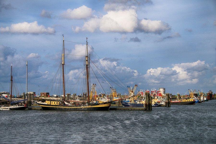 Vissersboten in de haven van Lauwersmeer.