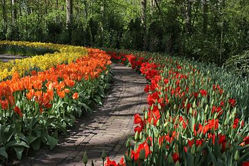 tulpen paadje van Annelies Voss