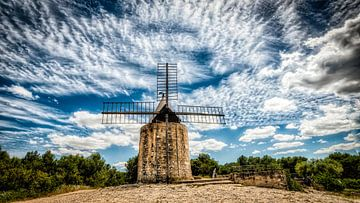 Windmühle von Daudet in Südfrankreich von Dieter Walther