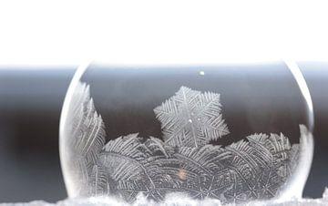 Bevroren bellenbaasbel van Marian Kramer