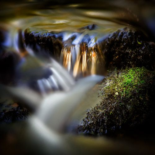 Gold in stream