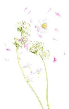 Frühling von Hennie Zeij