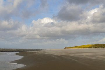 Strand van het Waddeneiland Vlieland  van