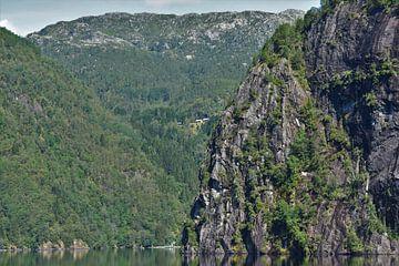 Noorse fjorden van Naomi Elshoff