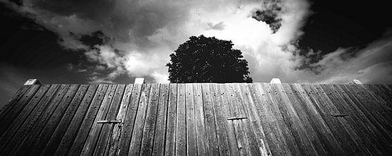 Hinter der Mauer (Schwarz-Weiß)