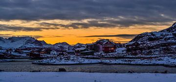 Het arctische gebied von Ilse Hofman