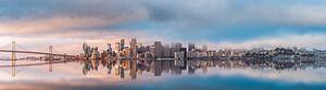 San Francisco Skyline van