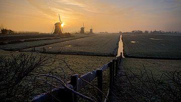 Sonnige Windmühlen von Sjon de Mol