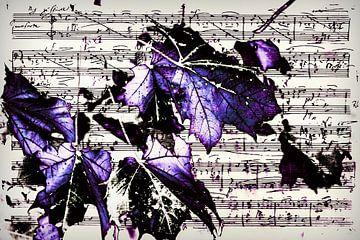 Notenblatt mit violetten Blättern von Christine Nöhmeier