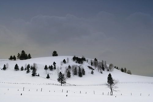Scène hivernal