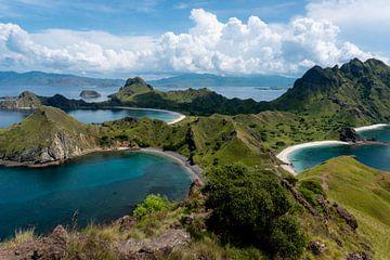 Padar Island Flores Indonesië van Boyd Helderton