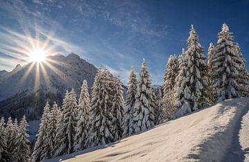Morgenzon met verse sneeuw in Oostenrijkse bergen van