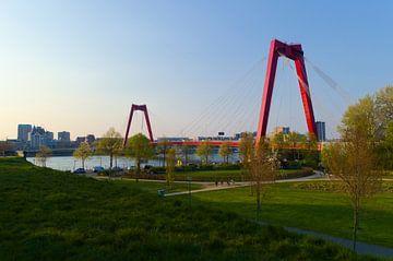 Willemsbrug Rotterdam vanaf 'Ons Park' van Sebastiaan van Hattum