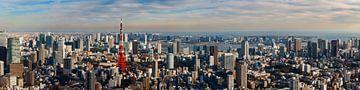 Uitzicht op de de skyline van Tokyo met de Tokyo Tower van