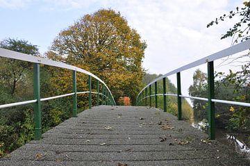 Brug / bridge van Henk de Boer