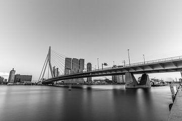 Die Erasmusbrücke in schwarz und weiß von Gea Gaetani d'Aragona