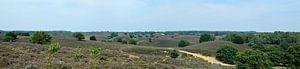 Posbank heide panorama