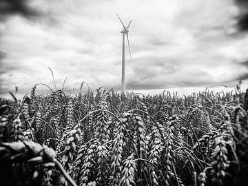 Windstil von Joep Oomen