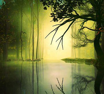 Bos en meer van Angel Estevez